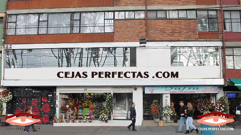 Cejas Perfectas